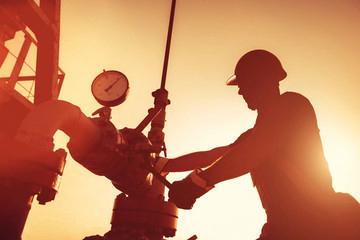 SIP check pump
